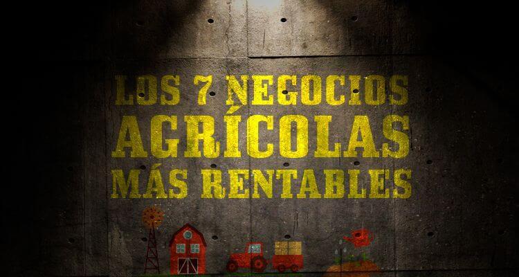 Los 7 Negocios Agricolas Mas Rentables En Espana Entrepreneursfight